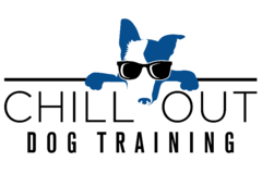 Chill Out Dog Training - Denver, CO