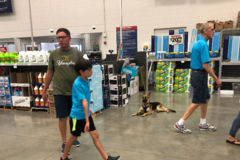 Bulletproof Dog Training San Antonio - San Antonio, TX