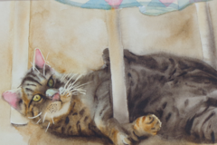 Pet Portraits in Watercolor by Monica Birsen - Maumee, OH