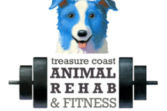 Treasure Coast Animal Rehab & Fitness - Vero Beach, FL