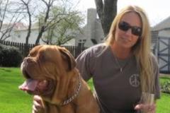 Request Quote: My Pets Comfort - W CNSHOHOCKEN, PA