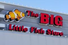Request Quote: The Big Little Fish Store - Dallas, TX