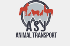 ASJ Transport Services  - Middletown, CT