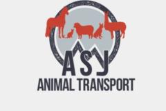 ASJ Transport Services  - Middletown, CT