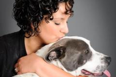 Request Quote: Alex Macias Dog Training - Long Beach, CA