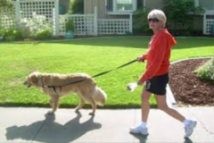 Request Quote: Pitter Patter Pet Care - Davis, CA