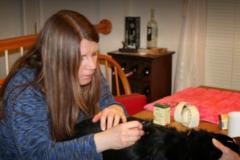 Request Quote: Joy-Chi Veterinary Acupuncture - Hampton, VA