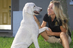 Request Quote: Dog Walking / Pet Sitting - Sarasota, FL