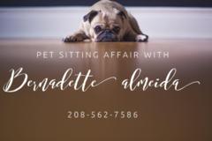 Request Quote: Pet Sitting Affair - Boise, ID