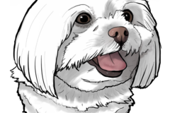 Request Quote: AnnaRoemantic Custom Pet Portraits - Wahiawa, HI