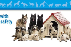 Request Quote: AM Pet Travel - Butler, WI