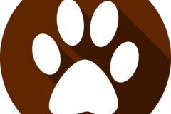 Request Quote: Anderson Acres Pet Care & Transportation - Bakersfield, CA