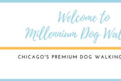 Request Quote: Millennium Dog Walkers & Pet Care, inc. - Chicago, IL