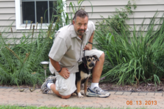 Request Quote: Dog Training Alert Canine Training S - Hopewell Junction, NY