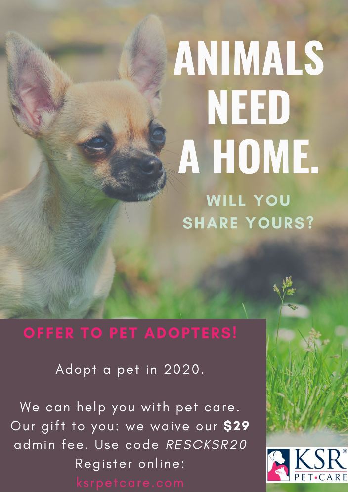 Get rewarded for adopting a pet in 2020