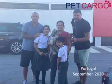 International Pet Relocation