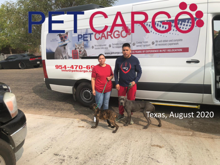 Domestic Pet Relocation