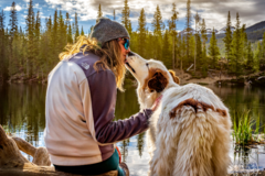 Request Quote: Adventure Pup Photography - Arvada, CO