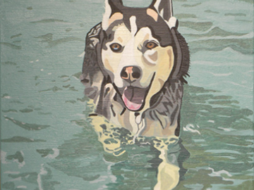Husky swimming acrylic
