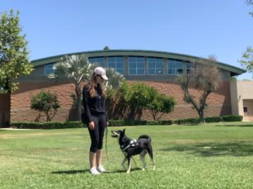 Trainer Mara and her dog Ciara