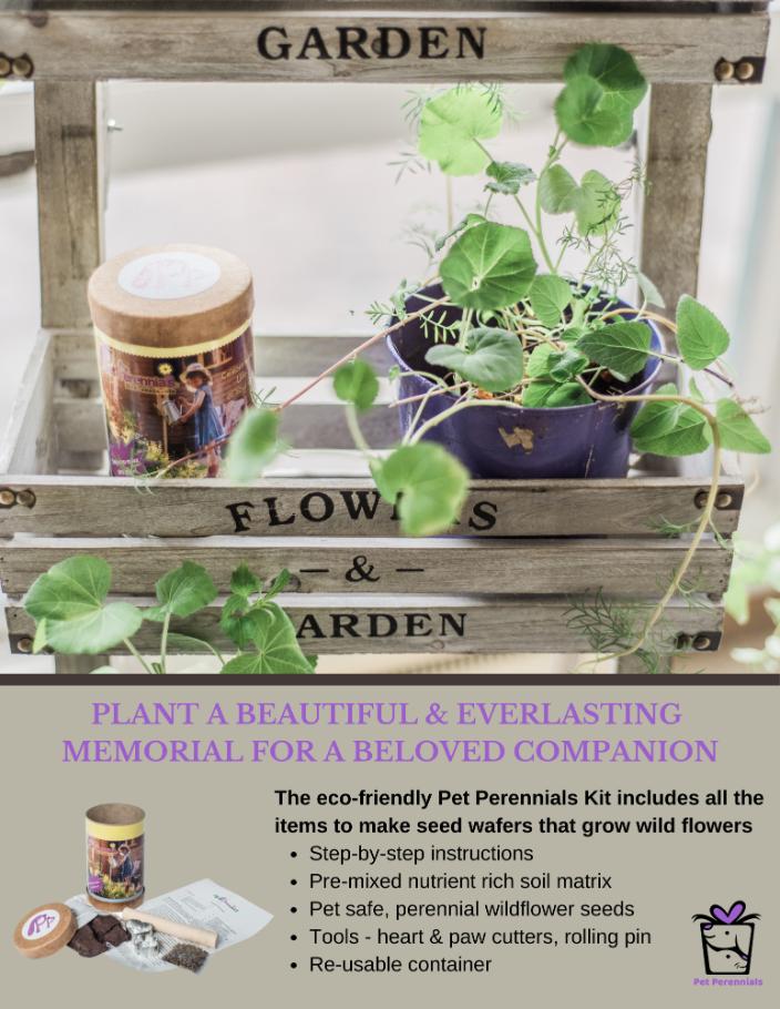 Pet Perennials Craft Kit - Create a Living Memorial