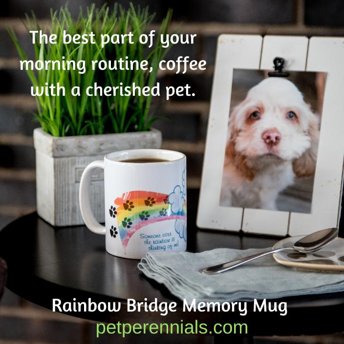 Rainbow Bridge Memory Mug