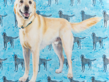 """'Bernie' - Golden Lab - Oil and photo transfer on canvas - 30x36"""""""