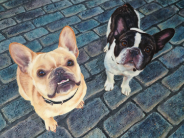 """'Nacho and Panchito' - French Bulldogs - Oil on canvas, 18x24"""""""
