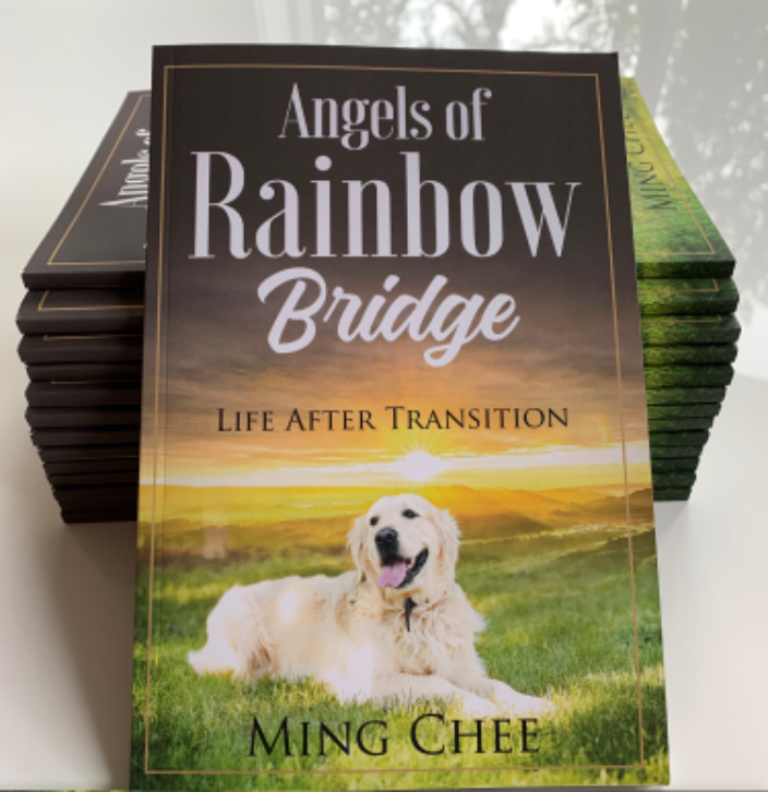 A book inspired by my corgi Lucy