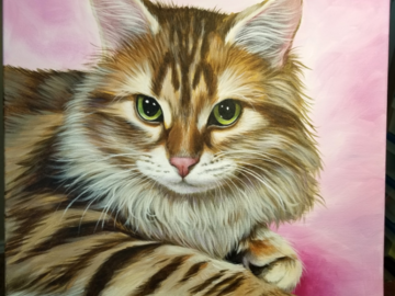 Example of a 16x20 cat portrait