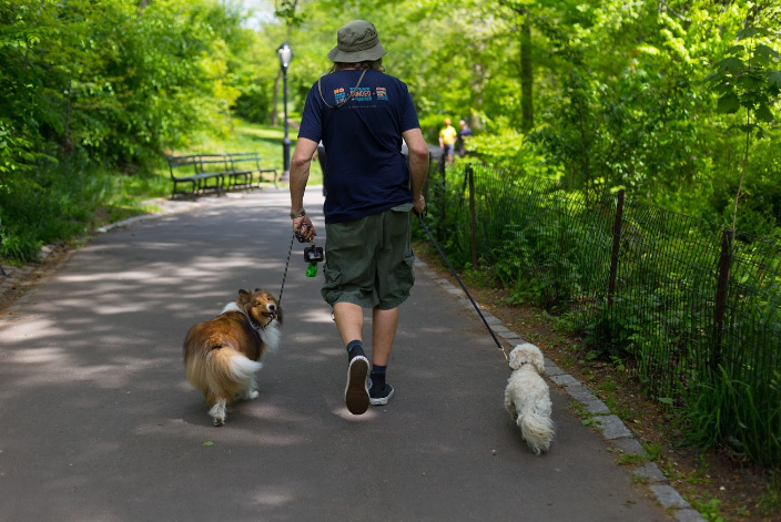 Dashwood, Michael and Luna take a stroll in Central Park!