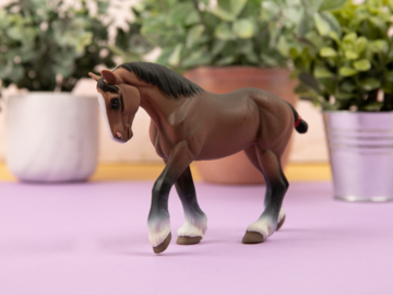 A Model Horse from Safari Toys