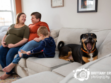 Yawning dog on couch for maternity session
