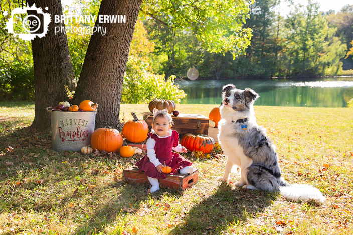 baby girl with dog in fall