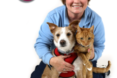 Request Quote: Pet First Aid 4U - Dallas, TX