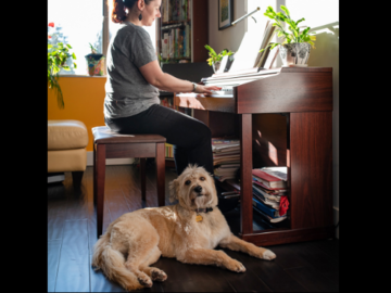 Owner playing piano accompanied by her mixed breed terrier