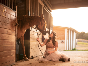 horse in stall and owner