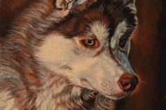 Request Quote: Karin Cohen Pet Portraits - Danforth, ME