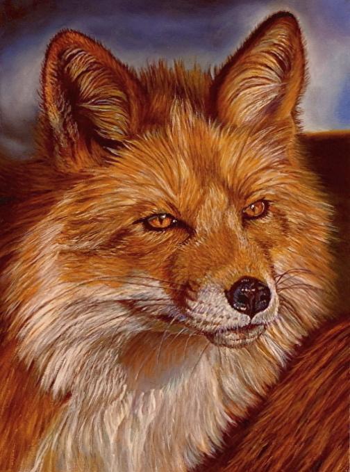"""Red"" ~ Red Fox Portrait"