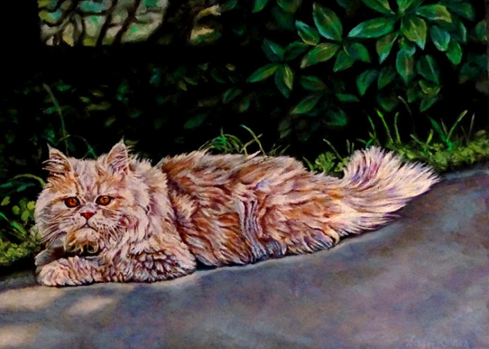 """""""George"""" ~ Persian Cat (Commission)"""