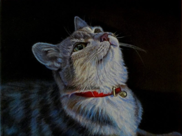"""""""Wait for It"""" ~ Cat Portrait (Original Composition)"""
