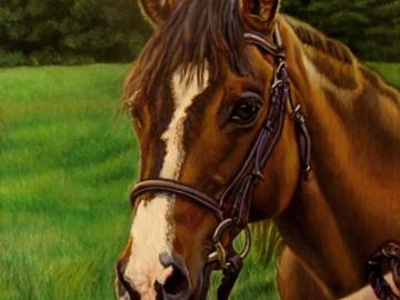 """Blaze"" ~ Horse (Commission)"