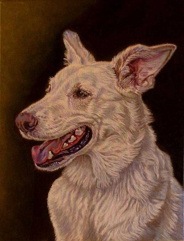 """Luna"" ~ White German Shepherd (Commission)"