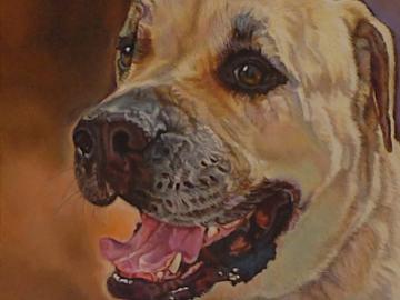 """""""Muwin Bear"""" ~ Bull Mastiff (Commission)"""