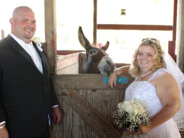 My wedding with my donkey