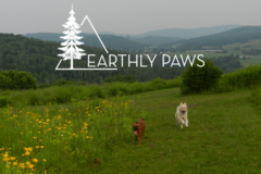Request Quote: Earthly Paws LLC   - Tewksbury, MA