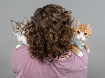 Woman holding two cats