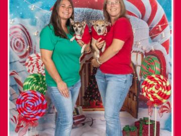 Family Holiday photoshoot with pets www.On-SitePhotography.com