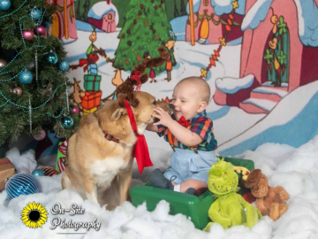 Holiday Pet and Children Photoshoots, photo sessions