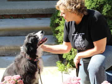 We develop strong bonds and lasting relationships with the pets in our care
